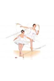 Tutu Ballet Semiplato en Maillot 229